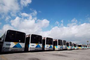 Ποιοι μπορούν να χρησιμοποιούν τα μέσα μεταφοράς χωρίς εισιτήριο
